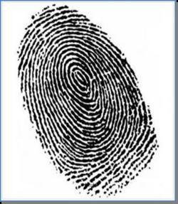 Nouvelle rubrique sur le thème des détectives : la déco