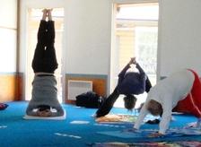 http://img.over-blog-kiwi.com/0/55/28/95/20140516/ob_8b9eb2_matinees-yoga.JPG