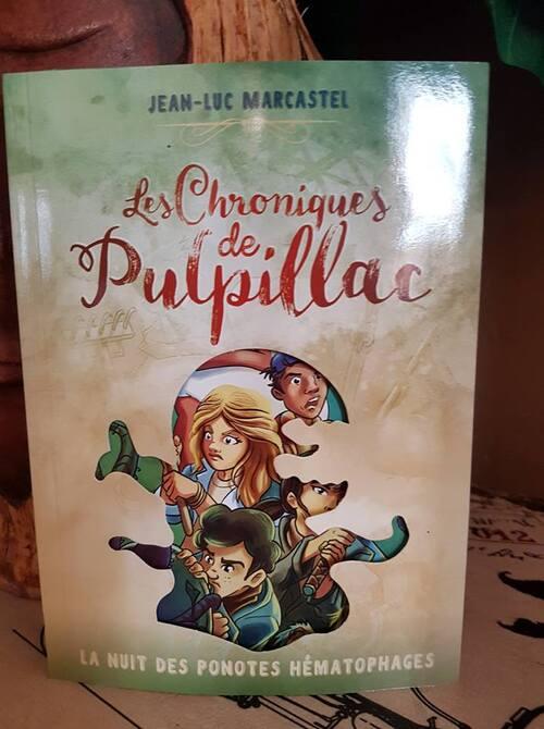 """""""Les chroniques de Pulpillac T2"""" : une nouvelle enquête des 5 amis qui ravira les plus jeunes amateurs de fantastique et d'aventures !"""