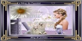Blogs  Amis