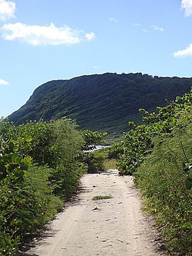 06-dec-2012--Petit-chemin-de-Gpe -Pres-de-Ste-Margurerite