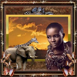 Souvenir d'Afrique.