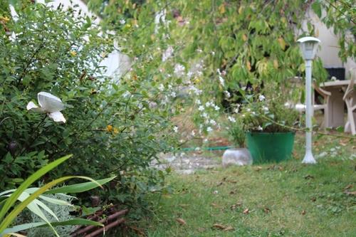 Le 15 août au jardin