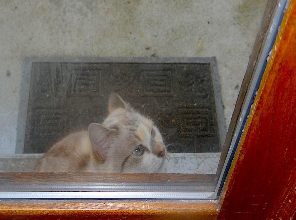 est-ce qu il y a quelqu'un pour ouvrir cette porte?????