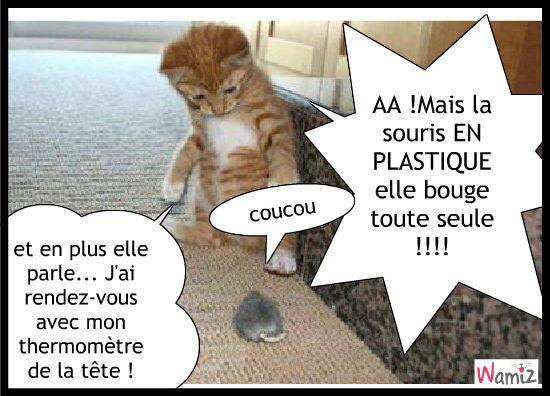 chat qui parle XD .
