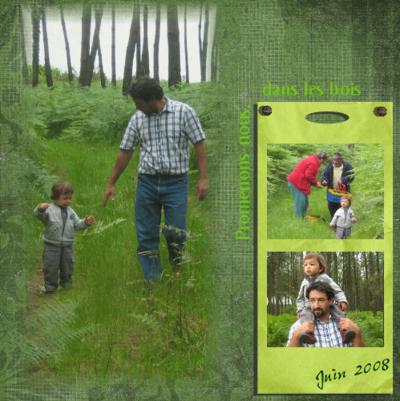 Blog de chipiron :Un chipiron dans les Landes, Pluie donc champignons