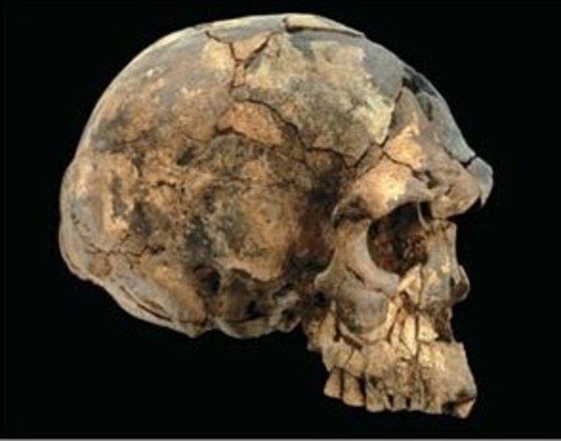 JEBEL IRHOUD (-300 000 ans) : COUP DE TAMBOUR