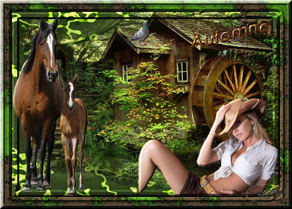 http://ekladata.com/qc2yXnno6zuVhITLjHrsWI-GV0I/Image3.jpg