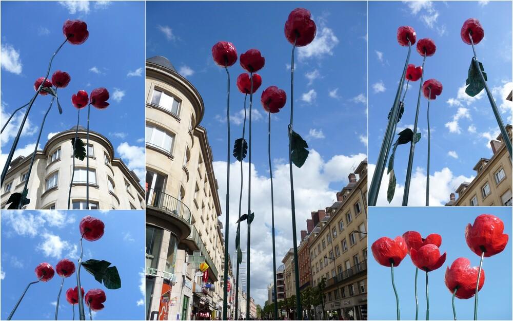Quoi de neuf à Amiens !