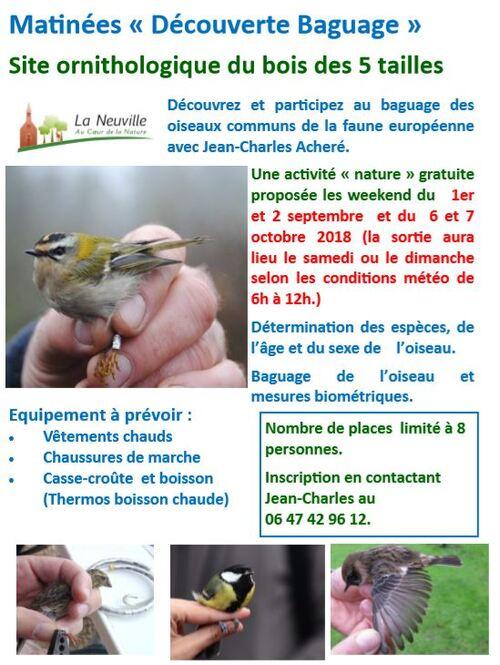 Découvrez le baguage des oiseaux au bois des 5 tailles à La Neuville