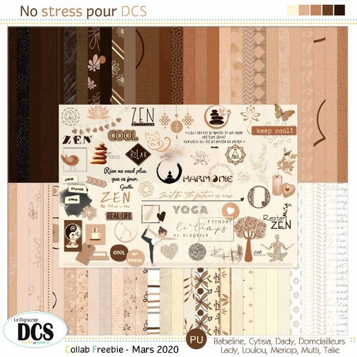 No stress pour DCS