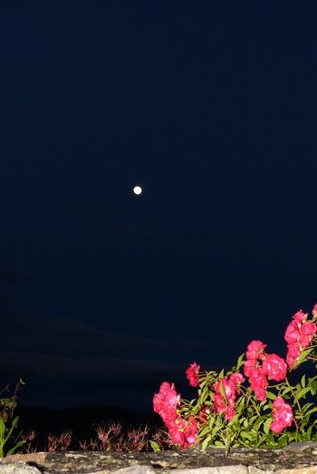 Au clair de la lune (2) :