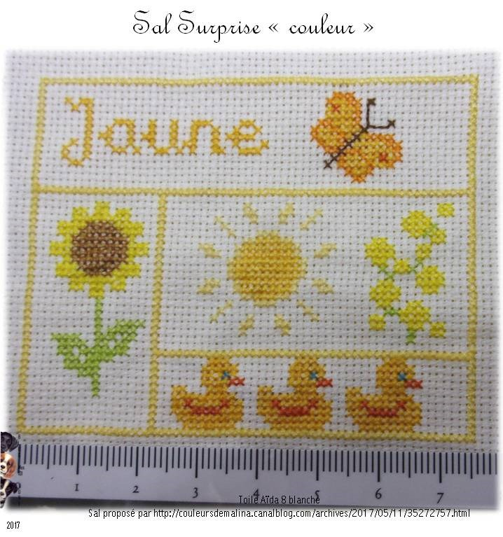 "Sal surprise ""couleurs"" - Jaune"