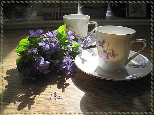 Pause-cafe--2-.JPG