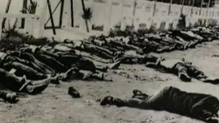 DÉCLARATION : LE 8 MAI 2019 SE SOUVENIR DU 8 MAI 1945 POUR MIEUX AGIR POUR LA PAIX DANS LA JUSTICE ET LA FRATERNITÉ