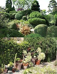 jardin zen 20