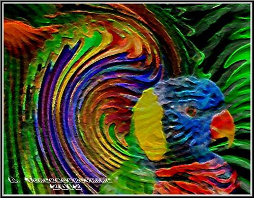 Le perroquet aux couleurs de l'arc en ciel