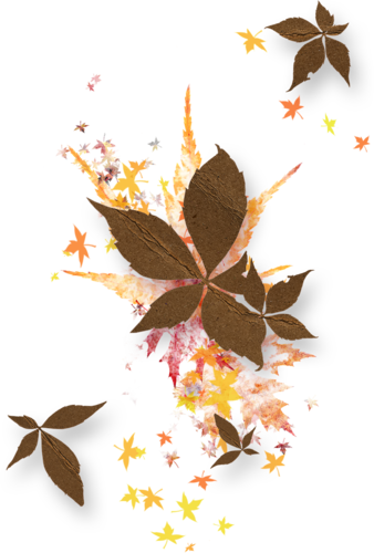 sd_misty-autumn-leaf-scatter.png