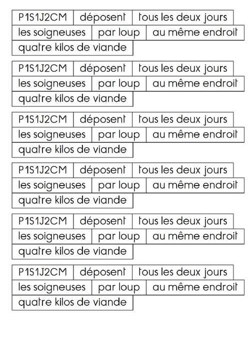 Grammaire au jour le jour tome 2 : les étiquettes pour constituer les phrases des exercices