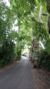 J1 Bayonne - Ghetary   20 km