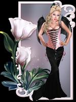 Kit avatar 01-2019