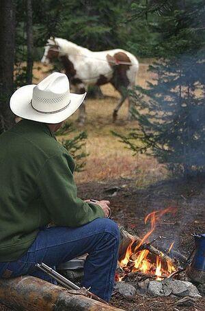 -image cowboy
