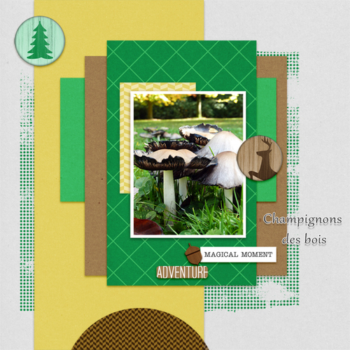 Layout Templates kit #37