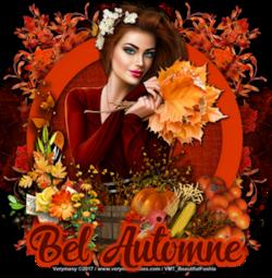1 Saison Automne - Verymany