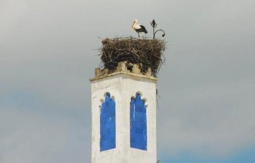 Pas gêne sur le minaret