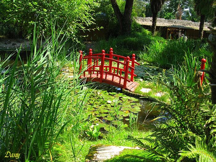 Parc floral ,St Cyr en Talmondais-1