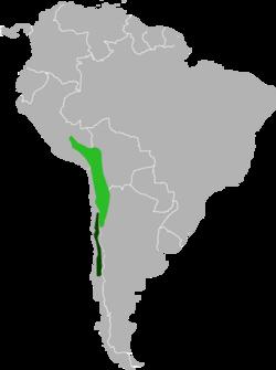 Répartition géographique http://chinchillasdeminuit.eklablog.com/