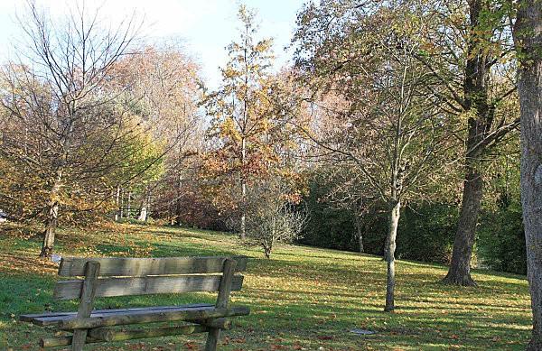 matin d'automne -8-