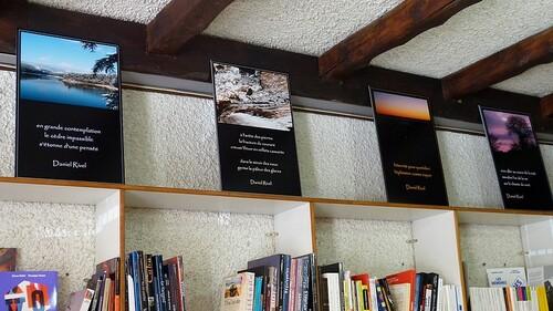 2013 L'exposition ''La courbure des ombres'' à la librairie La Hulotte. Annonay