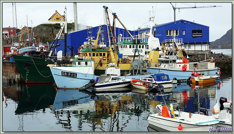 La balade se termine, retour au port toujours sous la pluie - Sisimiut - Groenland