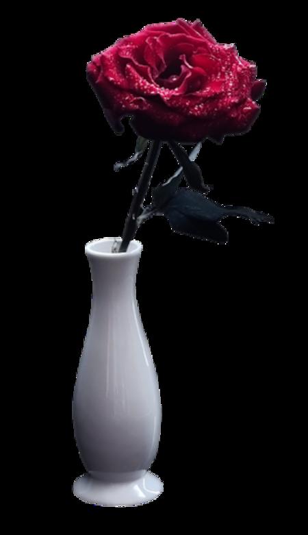 Fleurs dans vase / 1