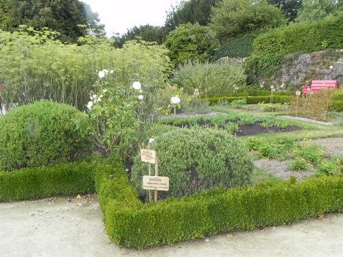 Le jardin de simples