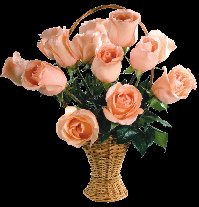 Virágok - Rózsa