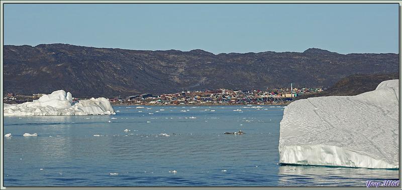 L'adieu à Ilulissat, nous continuons vers le sud pour le dernier jour de cette croisière et demain ce sera Evighedsfjorden - Groenland