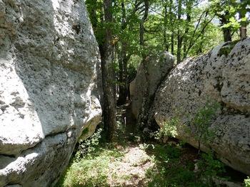La nef de pierre