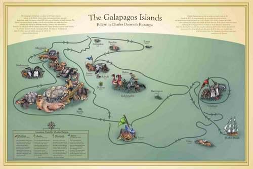 Patrimoine mondial de l'Unesco :  Les îles Galapagos - Equateur -