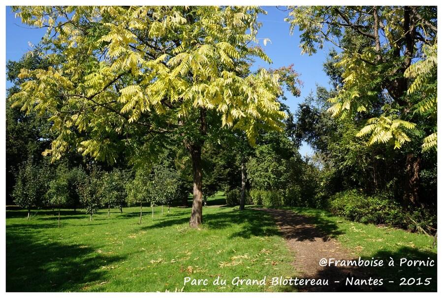 Nantes Parc du grand Blottereau - colline de Sunchéon - 2015