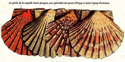 Des Volcans dans La baie de Saint Brieuc