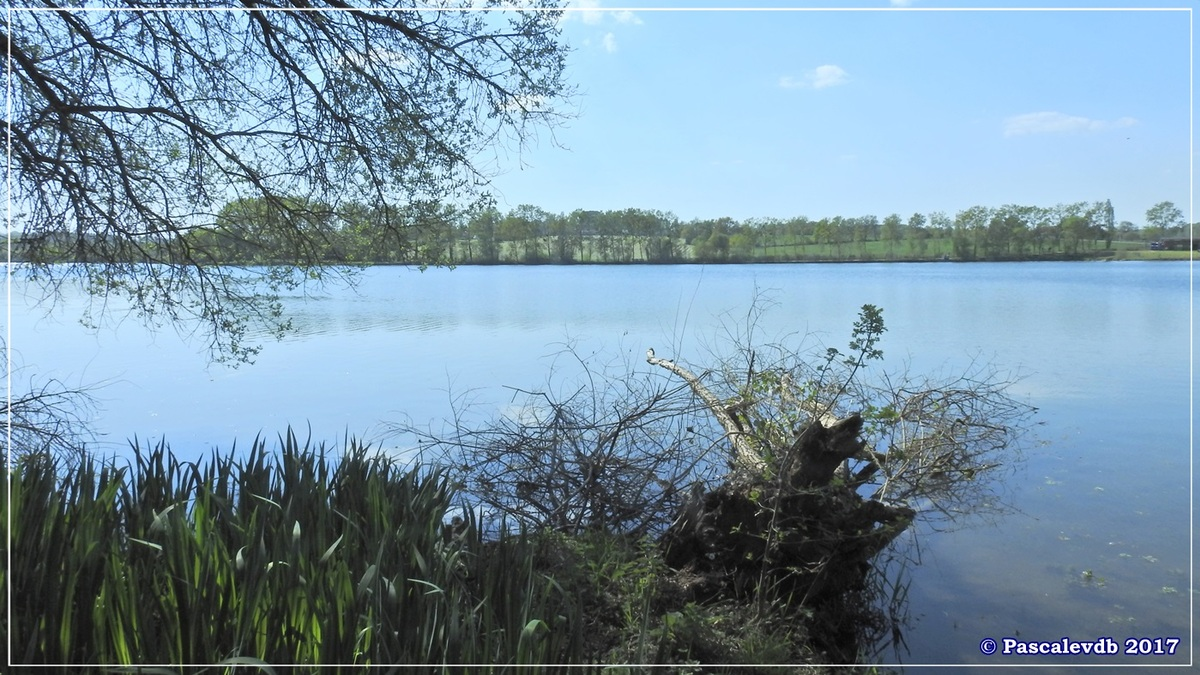 Le lac de La Prade - Avril 2017 - 10/12