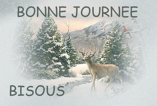 BONNE  JOURNEE  2