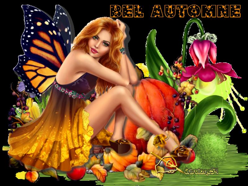 Bel  automne mes amis & Flash de mon amie Evy !