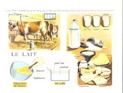 leçon sur la lait