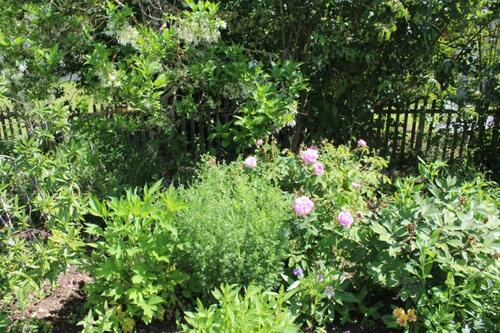 Rendez-vous au jardin, le jardin des courants du Loir