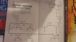 Premiers aperçus de l'édition définitive de Harry Potter et l'Enfant Maudit. #HarryPotter #CursedChild