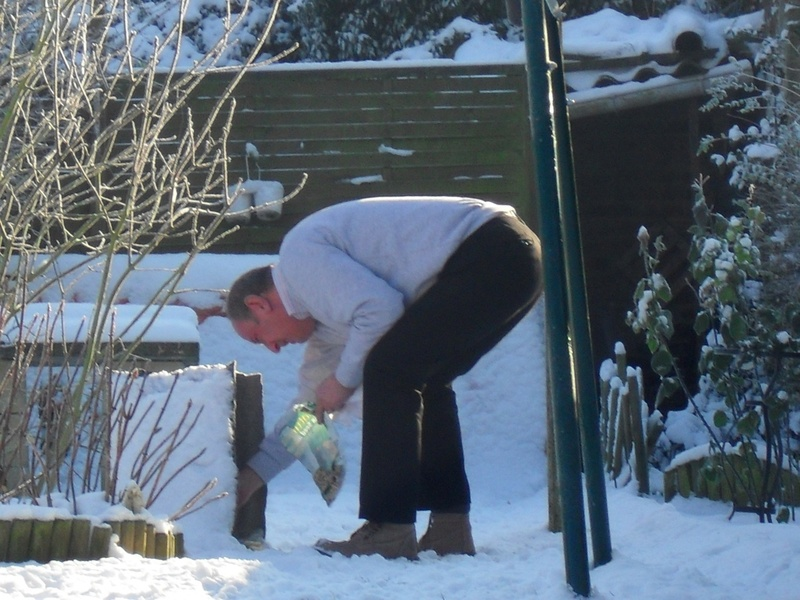 Choupette dans la neige