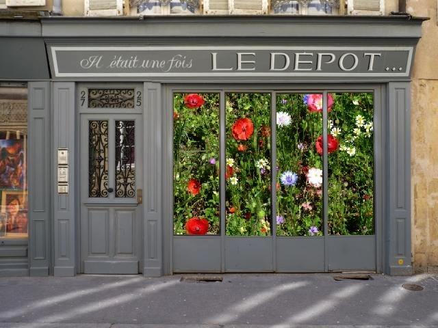 Vitrines insolites Metz 8 Marc de Metz 2011